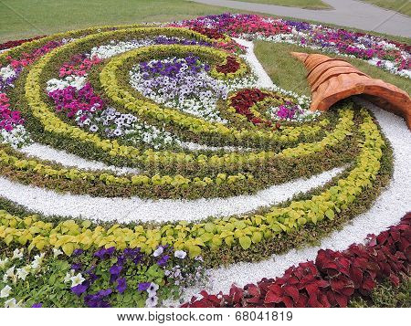 Bright decorative flower bed.