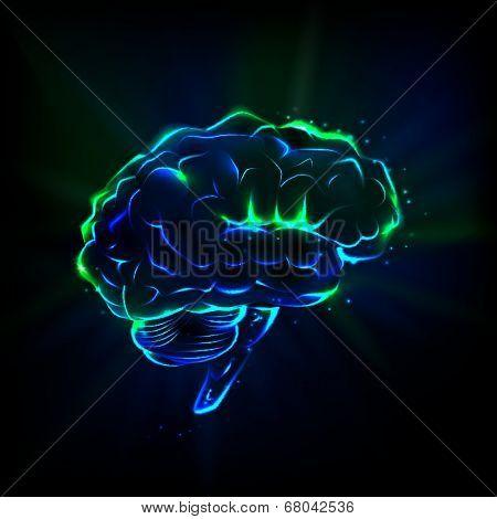 Shining brain
