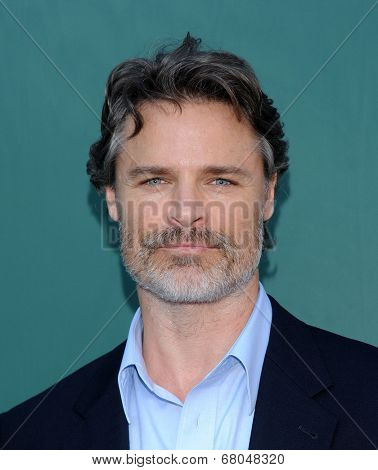 LOS ANGELES - JUL 08:  Dylan Neal arrives to the Hallmark's