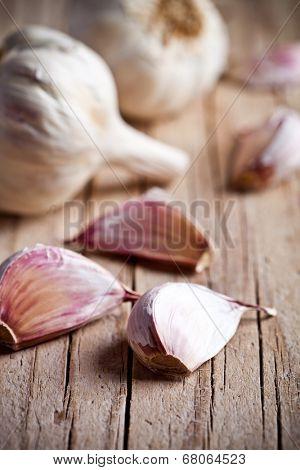 fresh garlic closeup on rustic wooden board