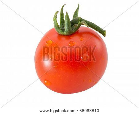 Entire tomato with water drops on white
