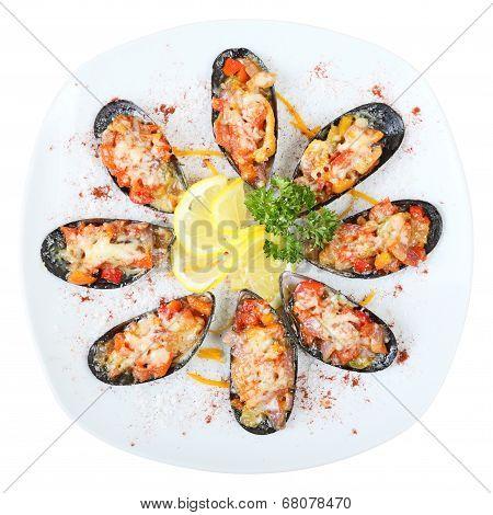 Mussels In Sea Salt Top View