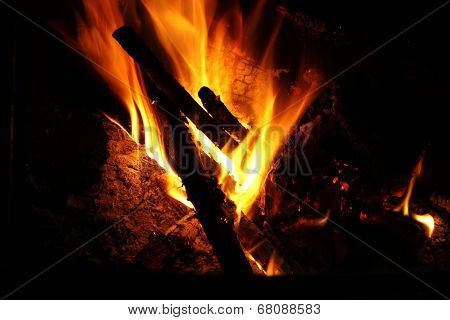 Burning Log Fire
