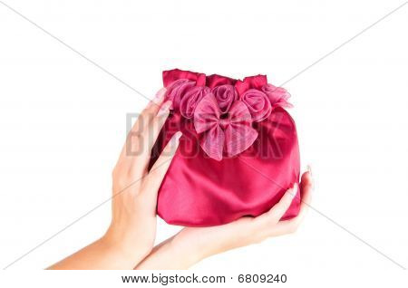 Womans Bag