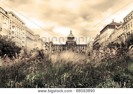 Wenceslas Square In The Summer, Prague