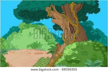 Cartoon tropical forest vegetation background