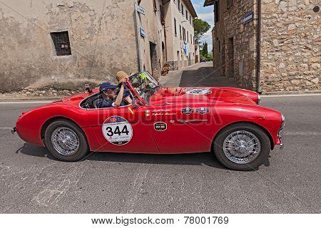 Austin Healey 100/4 Bn1 (1955) In Mille Miglia 2014