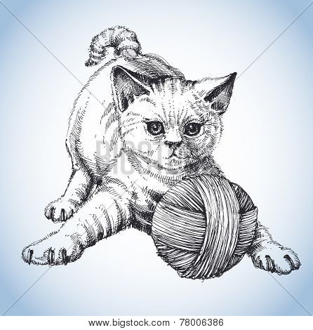 A cute cat playing with a ball of wool