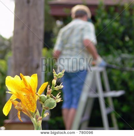 woman doing yard work with yellow flower in front