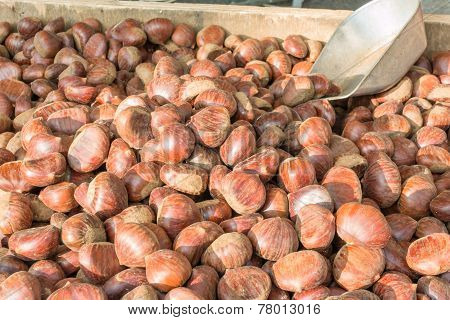 Delicious Group Of Chestnuts Fruits