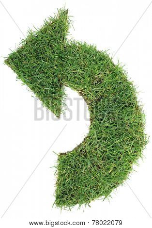 Ecological Green Grass Arrow Isolated on White Background