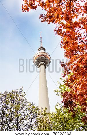 Berliner Fernsehturm tower in Berlin and leaves