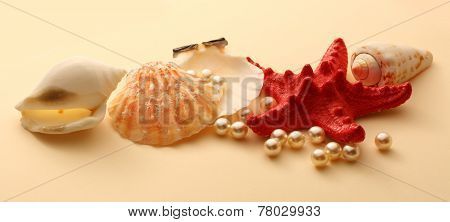 Scattering White Pearls In Seashell And Seastar