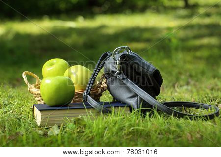 Book, Apples And Bag On Green Grass
