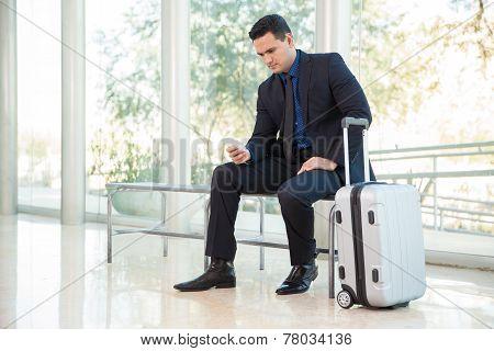 Checking Flight Status Online