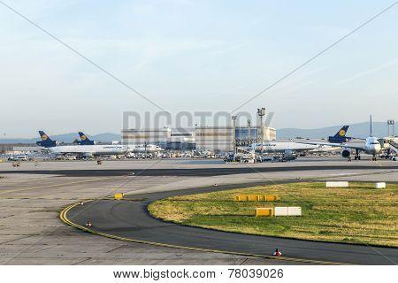 Lufthansa Cargo Aircraft Ready For Boarding At Terminal 1