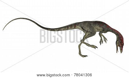 Compsognathus dinosaur walking - 3D render