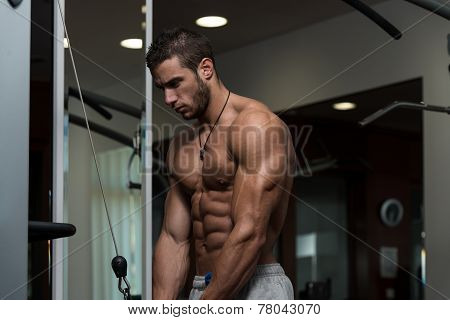 Young Male Doing Triceps Exercises In The Gym