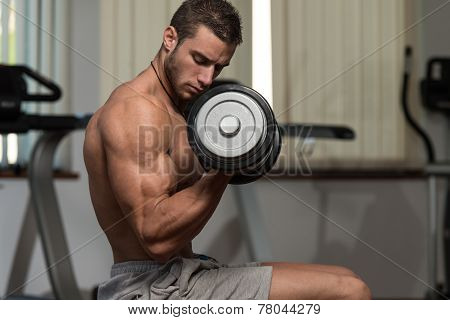 Young Male Doing Biceps Exercises In The Gym