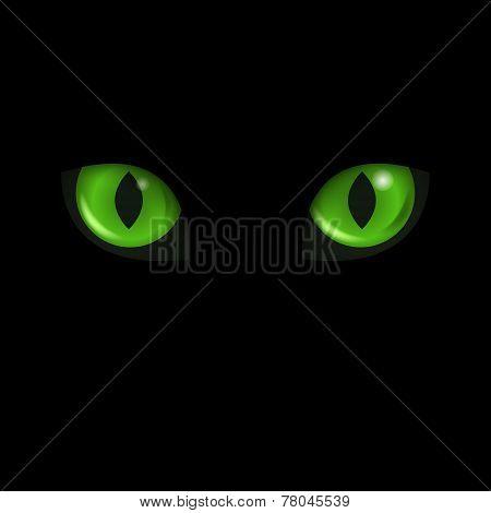 Vector Cat's Eyes. Black Cat.