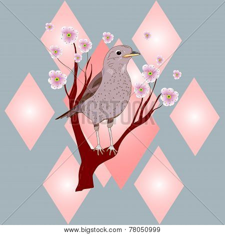 Bird on a flowering tree branch