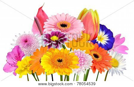 Flower Bouquet Collection Of Various Colorful Flowers Isolated