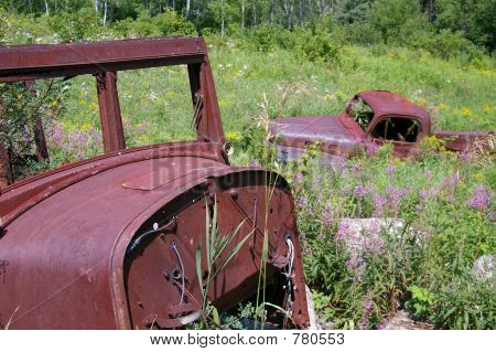 rusted out old trucks