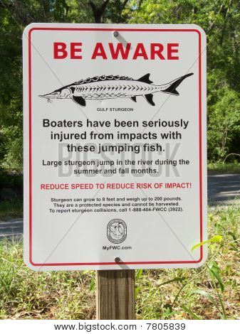 Sturgeon Warning Sign