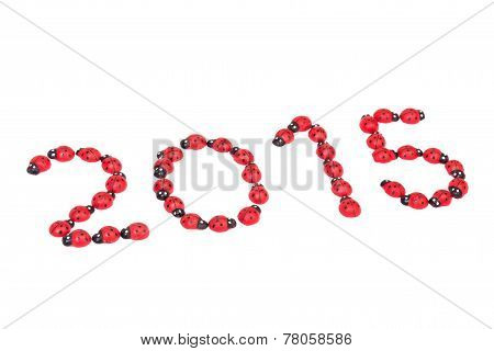 Ladybug Numbers For 2015