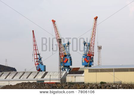 Large Red And Blue Cranes