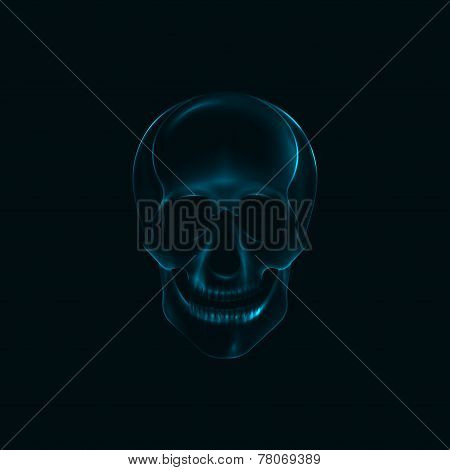 vector illustration of a human  skull x-ray print. medical conce