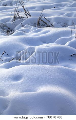 Snow Drifts In Snowbound Winter Meadow