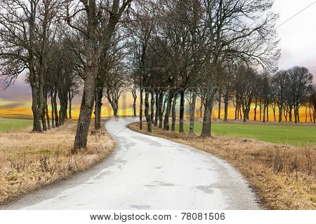 Rural Avenue