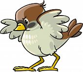 picture of ares  - Children vector illustration of young brave sparrow - JPG