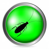 image of cockroach  - Cockroach green button isolated on white background - JPG