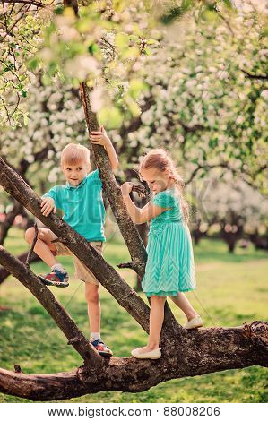 happy siblings climbing apple tree in spring garden