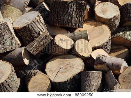 Pile Of Chopped Cut Trunk Firewood In Disorder