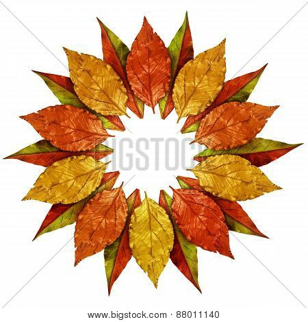 Autumn Leaves Vintage Golden Frame