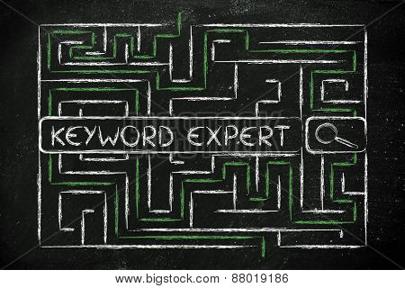 Maze With Search Tags Seeking For A Keyword Expert