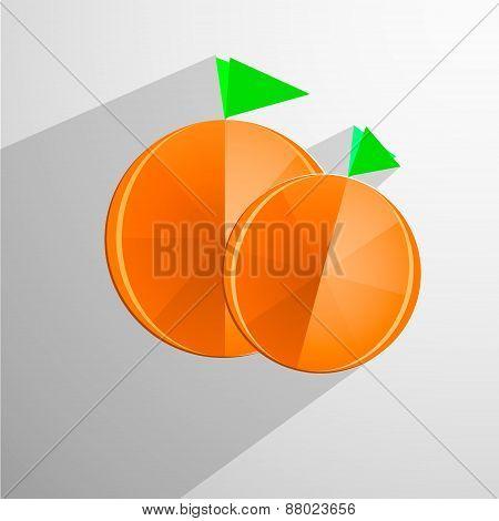 Orange fruits vector illustration