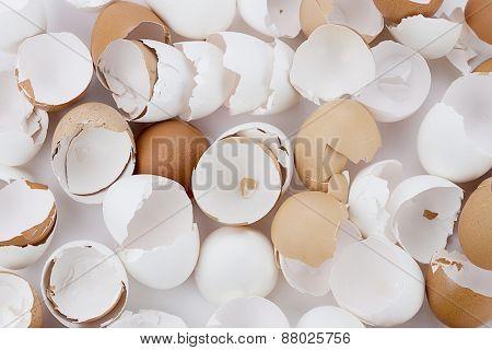 Broken egg shells background.