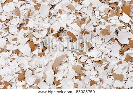 Crushed Egg Shells Background