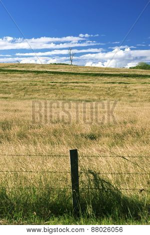 Outback agricultural and farming field.