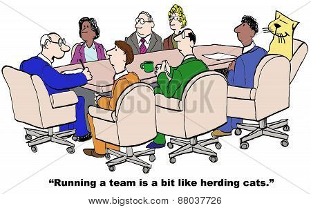 Team and herding cats