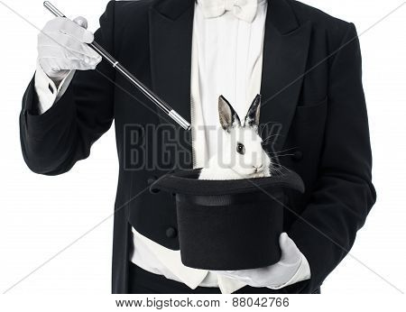 Top hat with rabbit magician trick