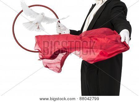 Magic trick Magician performance