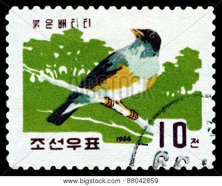 Vintage  Postage Stamp. Bird  .