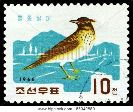Vintage  Postage Stamp. Bird Lark.