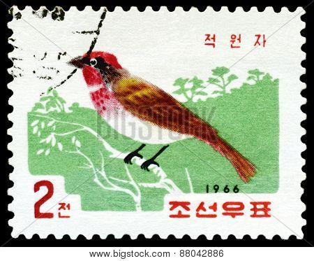 Vintage  Postage Stamp. Bird Red Sparrow.