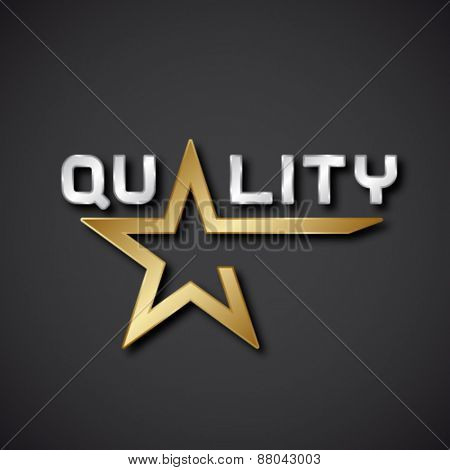vector quality golden star inscription icon